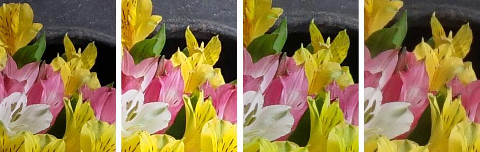 fuji_xt10_vs_oly_em10ii_vs_pana_gx8_vs_sony_a6000_noise_jpeg_800iso