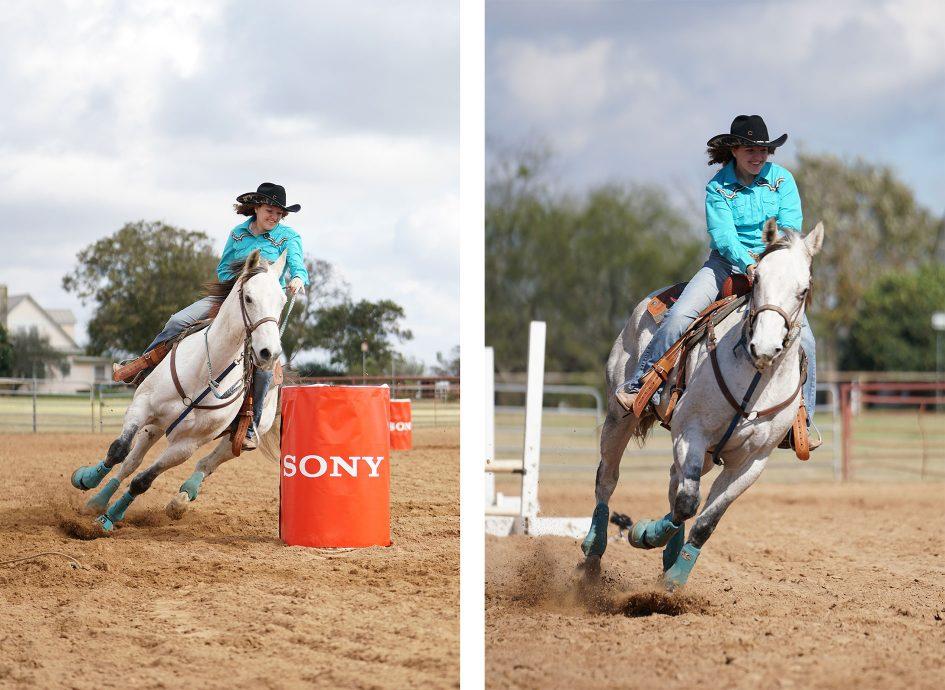 sonya6500_horses_1890