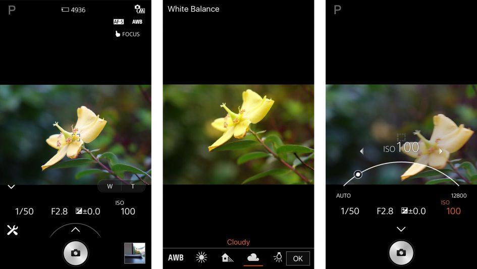sony_rx10_m2_wifi_remote_3000px