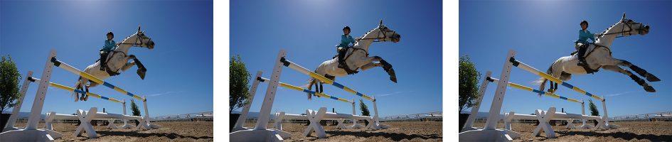sony-a9-horse-jump-row2