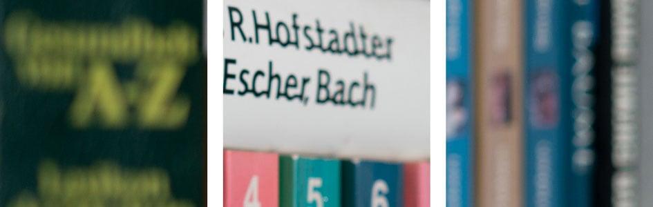 bookeh_Zeiss40f2Batis_f2_03059crops