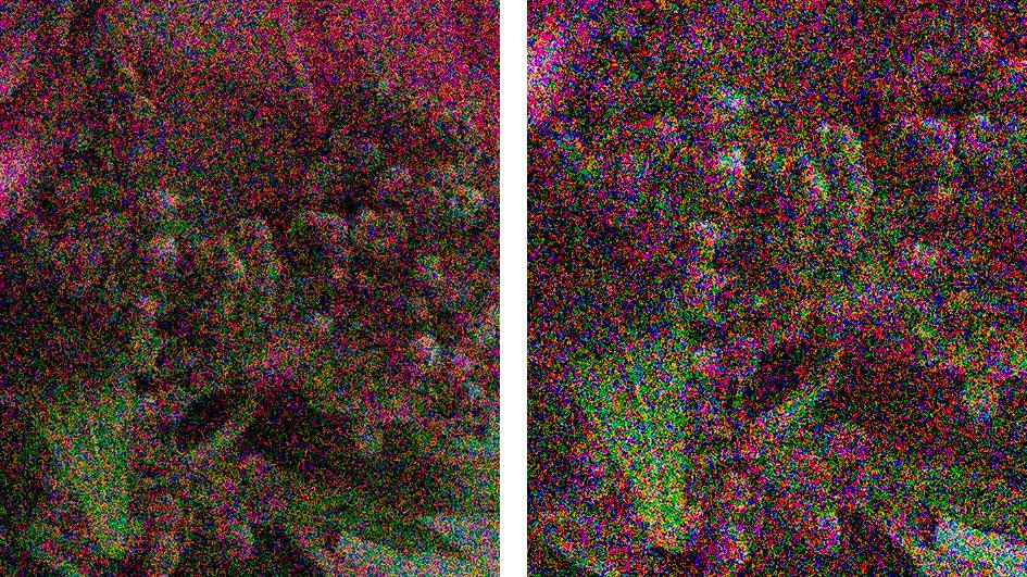 sony-a7r-iii-vs-iv-noise-raw-102400iso