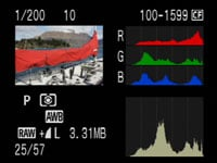 Canon 40D play RGB histogram