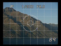 Olympus E410 - live view grid