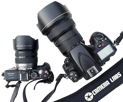 Panasonic GX1 vs Nikon D800