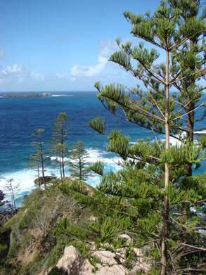 Norfolk Island landscape - Sony Cyber-Shot H9 at 5.2mm f5.6